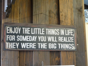 Enjoy_the_little_things_in_life,_for_someday_you'll_realize_they_were_big_things.JPG